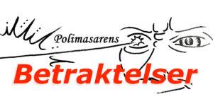 Sverigedemokraterna,Betrakteelser